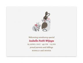 Baby Bunny (Baby Announcement Set of 6)