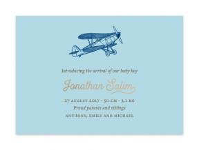 Vintage Airplane (Baby Announcement Set of 6)