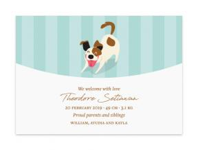 Happy Doggy (Baby Announcement Set of 6)