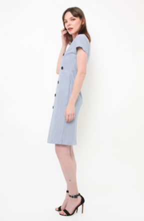Coco Dress in blue